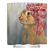 Peppermint Shower Curtain