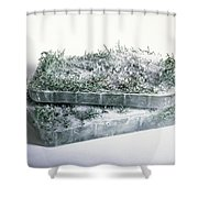 Pine Twigs And Ice Shower Curtain