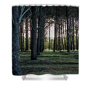 Pines Shower Curtain