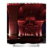 Pink Bridge 4 Shower Curtain