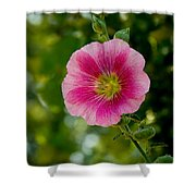 Pink Hollyhock Shower Curtain
