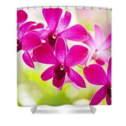 Pink Orchid Lei Shower Curtain