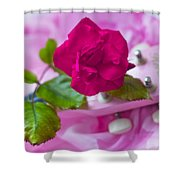 Pink Rose 5 Shower Curtain