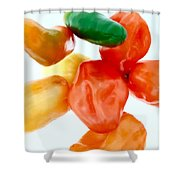 Piquant Play 1  Shower Curtain