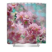 Plum Blossom - Bring On Spring Series Shower Curtain