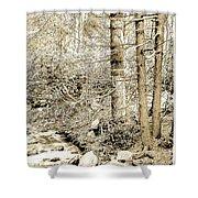 Pocono Mountain Stream, Pennsylvania, Digital Art Shower Curtain