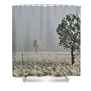 Pogonip Frosty Morning Shower Curtain