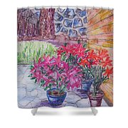 Poinsettias - Gifted Shower Curtain