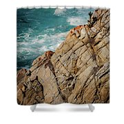 Point Lobos California Shower Curtain