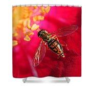Pollen Feast Shower Curtain