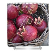 Pomegranates In A Basket Shower Curtain
