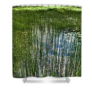 Pond Grasses Shower Curtain