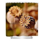 Poopy Seed Pod... Shower Curtain