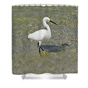Posing White Egret Bird Shower Curtain