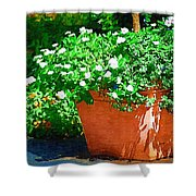 Potted Plant Shower Curtain