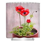 Potted Shower Curtain