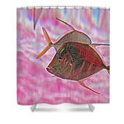 Pretty Fishy, Fish, 6, Multi-color, Pink Backgroun7 Shower Curtain