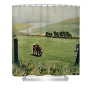 Pt. Reyes Shower Curtain