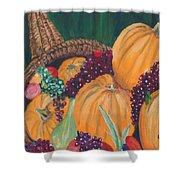 Pumpkin Plenty Shower Curtain