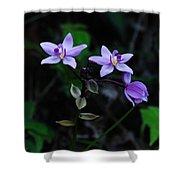 Purple Orchids 2 Shower Curtain