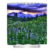 Purple Skies And Wildflowers Shower Curtain