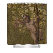 Putto Gathering Grapes Shower Curtain