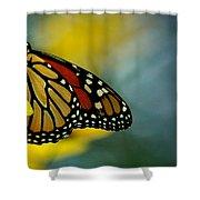 Queen Monarch Shower Curtain