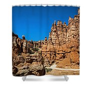Queens Garden Shower Curtain