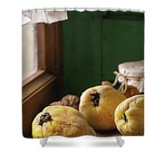 Quince And Honey Shower Curtain