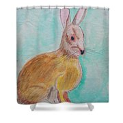 Rabbit Illustration Shower Curtain