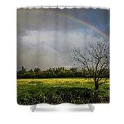 Rainbow Fields Shower Curtain