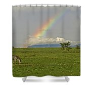 Rainbow Over The Masai Mara Shower Curtain