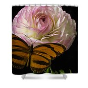 Ranunculus And Butterfly Shower Curtain