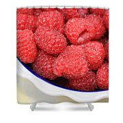 Raspberries In Polish Pottery Bowl Shower Curtain