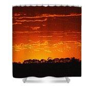 Red Arkansas Shower Curtain