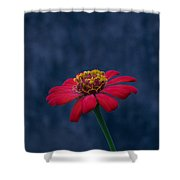 Red Flower 2 Shower Curtain