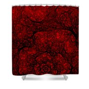 Red Fractal 051910 Shower Curtain