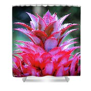 Red Pineapple Shower Curtain
