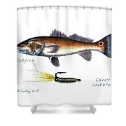 Redfish And Cave's Wobbler Shower Curtain