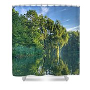 Reflections Of A Weeping Willow Shower Curtain