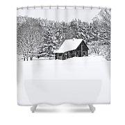Remote Cabin In Winter Shower Curtain