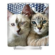 Rescued And Spoiled Shower Curtain