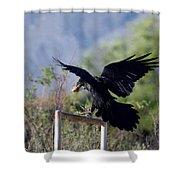 Resident Raven Shower Curtain