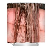 Right Whale Baleen Shower Curtain