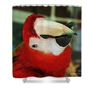 Ringo The Ruby Macaw Shower Curtain