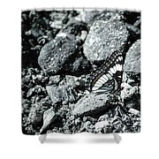 Rising Ashes Shower Curtain
