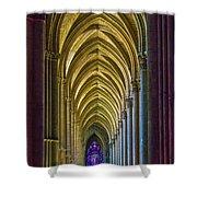 Rising Prayer Shower Curtain