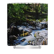River In Wales Shower Curtain