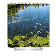 River Water Pollution Shower Curtain