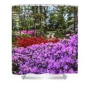 Road With Flowers Shower Curtain